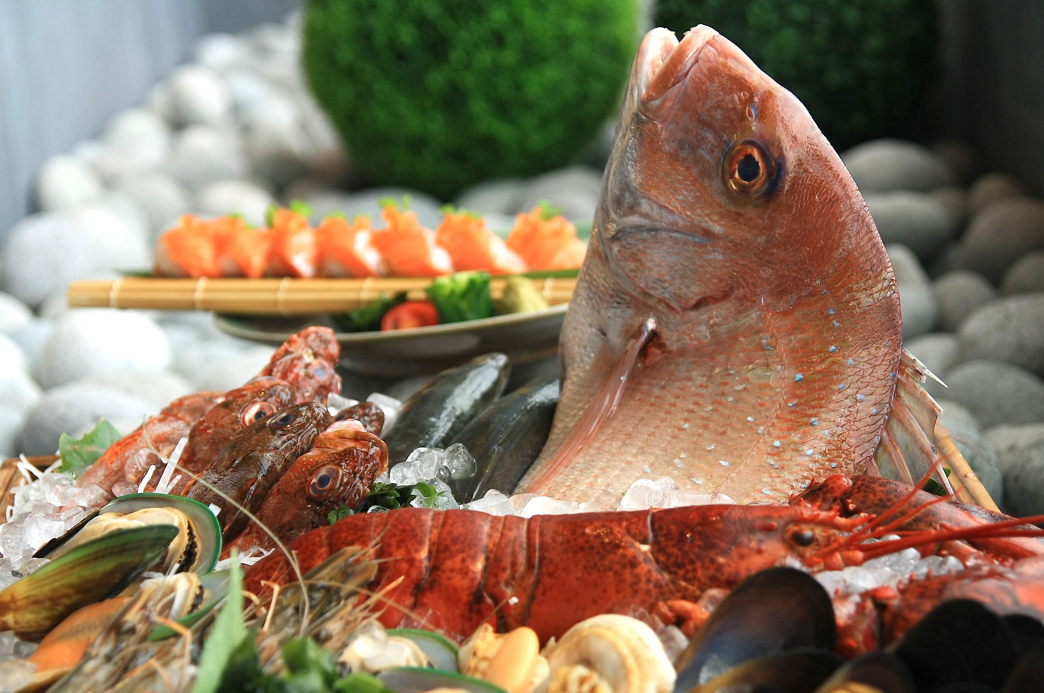 ◆『玄海の海鮮フェスタVol.2』開催 ◆